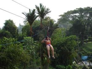 Dana melayang di Taman Angsa